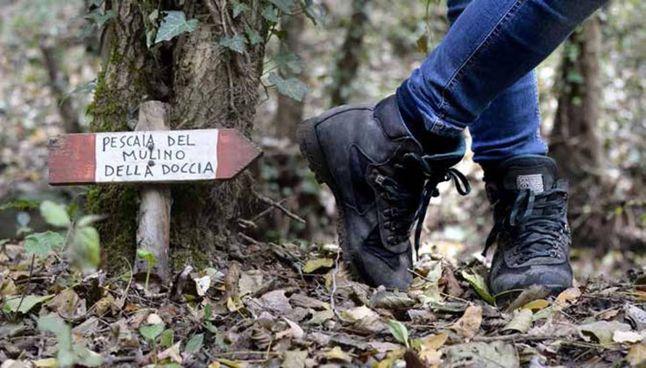 """Uno dei passaggi lungo il sentiero che porta ai """"Mulini"""", sopra la casa natale di Leonardo"""