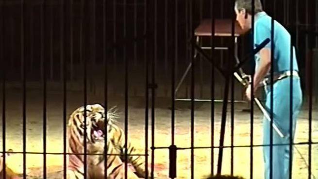 Ettore Weber durante uno spettacolo in un fermo immagine di un video di YouTube (Ansa)
