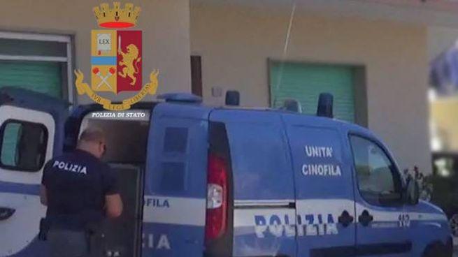 Senigallia, la polizia ha arrestato un uomo per spaccio
