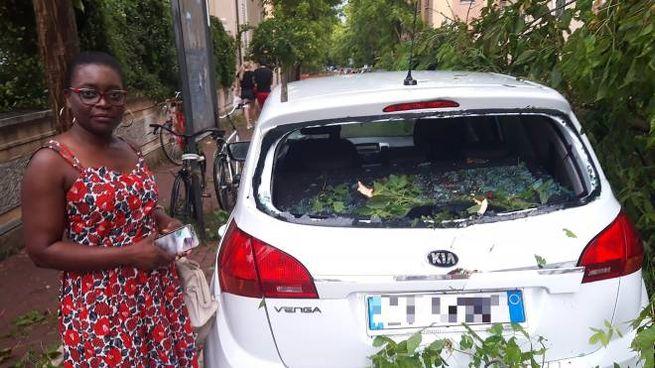 I rami caduti hanno sfondato i vetri delle auto (foto Print)