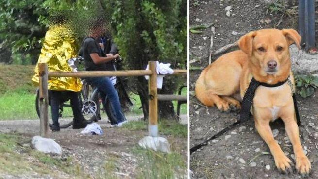 Il cane e il padrone, sani e salvi dopo la disavventura nel laghetto (foto Artioli)