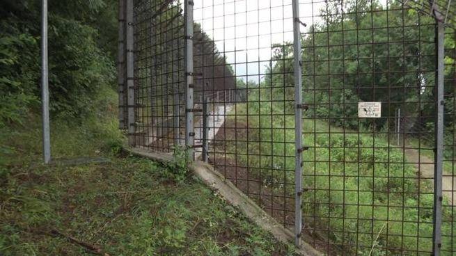 Il recinto del Centro Casteller da cui è evaso l'orso M49 (Ansa)