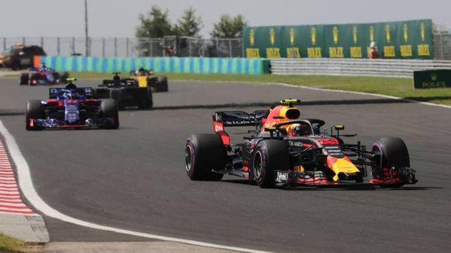 Max Verstappen, vincitore a Hockenheim, in azione all'Hungaroring