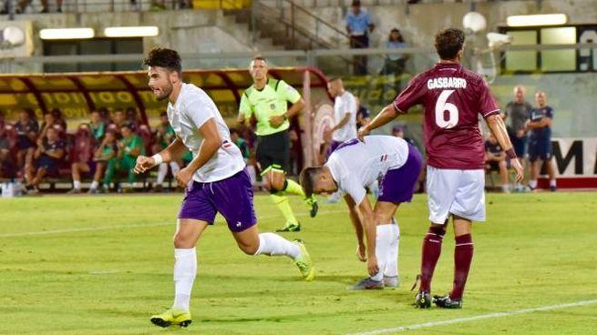 Livorno-Fiorentina (foto Novi)