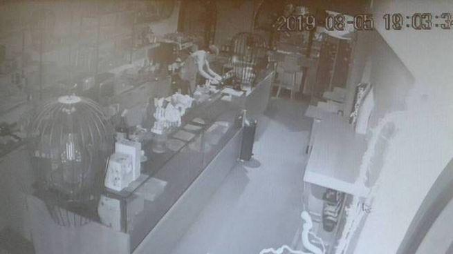 Il ladro immortalato dalle telecamere mentre ruba e poi se ne va