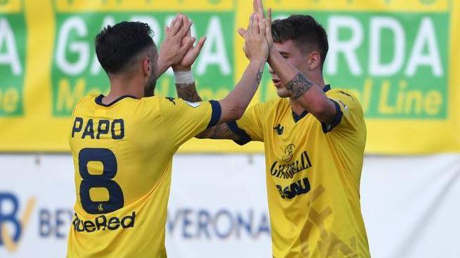 Modena Virtus Verona, l'esultanza dopo il pareggio dei gialli (FotoFiocchi)