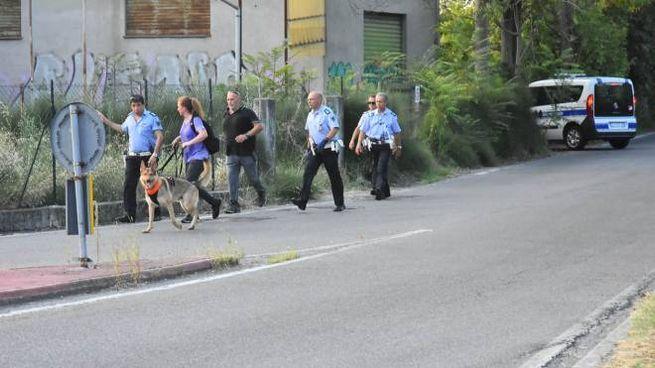 Omicidio barista Reggio Emilia, caccia al killer con i cani (Foto Artioli)