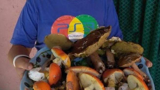 Il giovane Francesco Tonelli con i funghi trovati insieme alla nonna