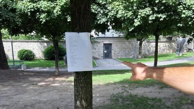 Una poesia su un albero dei Giardini Sassi