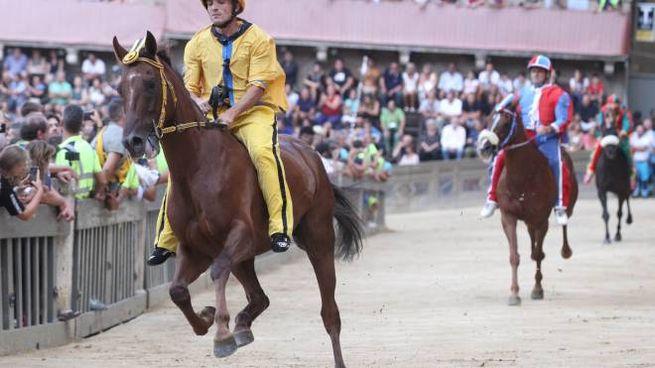 Palio, l'Aquila vince la prima prova (Lazzeroni)