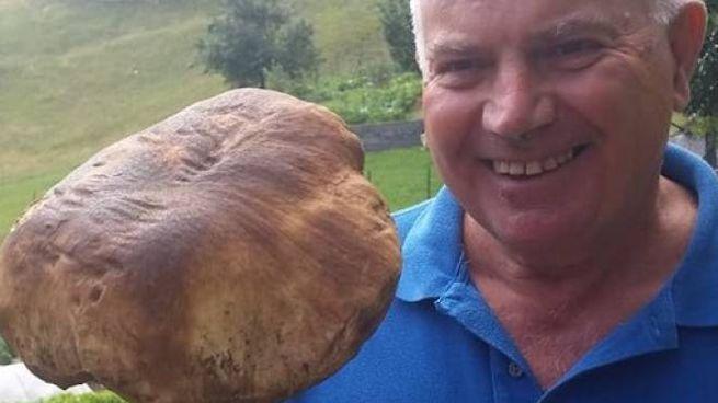 Fungo porcino da un chilo e 570 grammi raccolto sul Catria