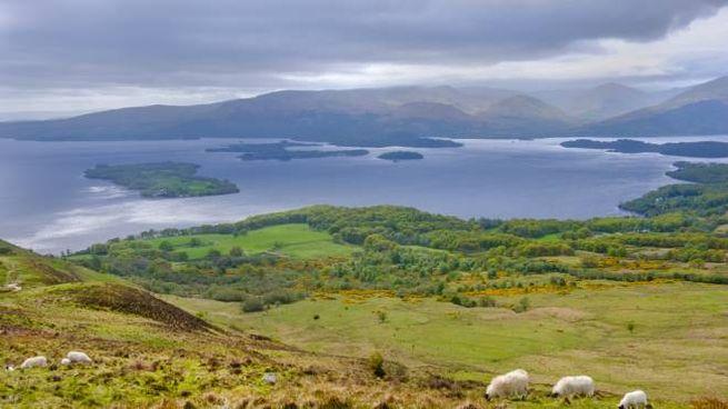 Le isole del Loch Lomond, in Scozia
