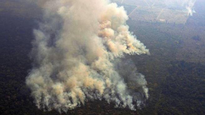 La foresta amazzonica divorata dalle fiamme (AFP)