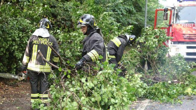 Vigili del fuoco al lavoro (foto archivio Isolapress)