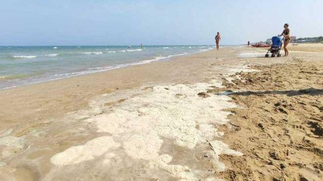 Il materiale biancastro depositato in battigia  e le bolle in mare