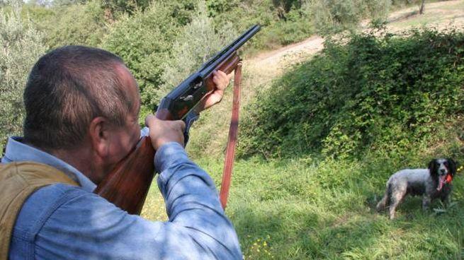 Niente preapertura della caccia nelle Marche
