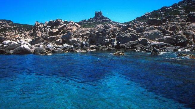 L'isola di Serpentara