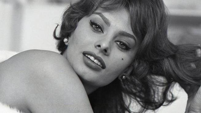 Sofia Loren in una foto d'archivio