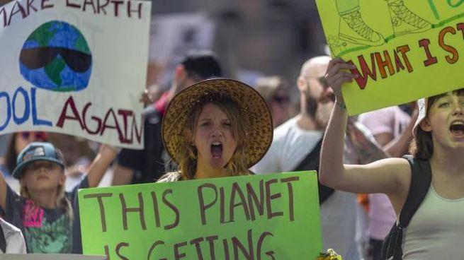 Manifestazione per il clima in California (Ansa)
