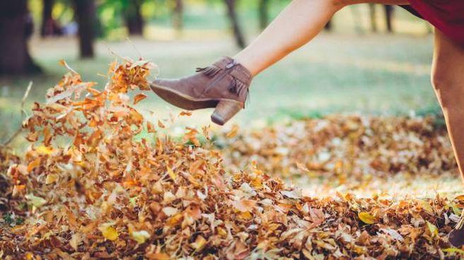 Tronchetti, stivali, anfibi o sneakers: ecco le scarpe per l'autunno inverno