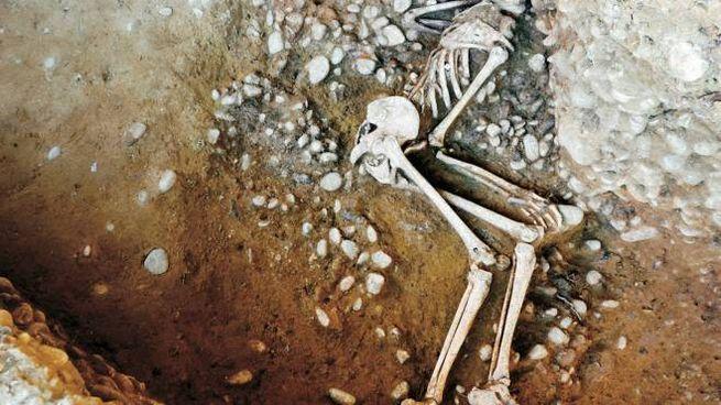 Lo scheletro di Chiusi