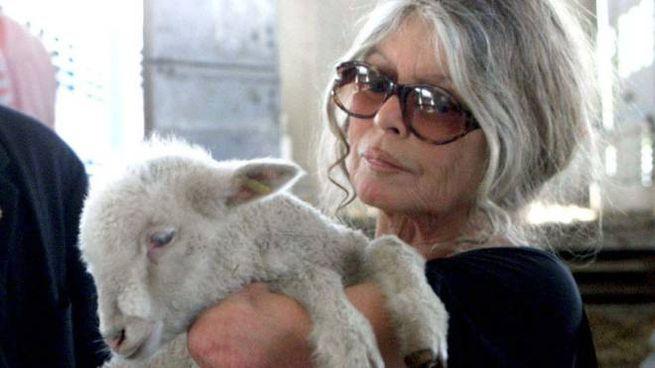 Brigitte Bardot in una foto Olycom