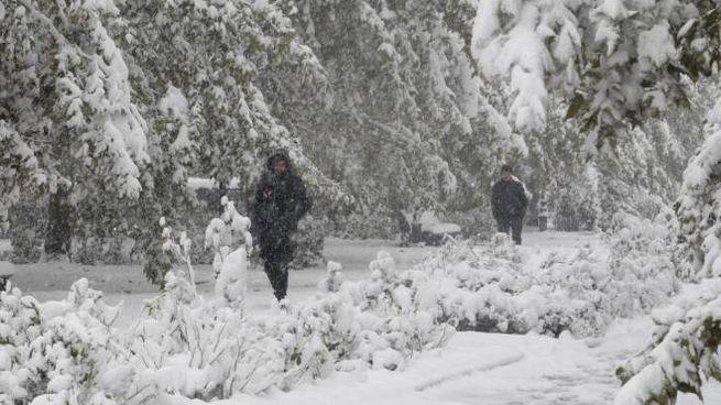 Meteo, da venerdì le prime forti nevicate (foto Ansa)