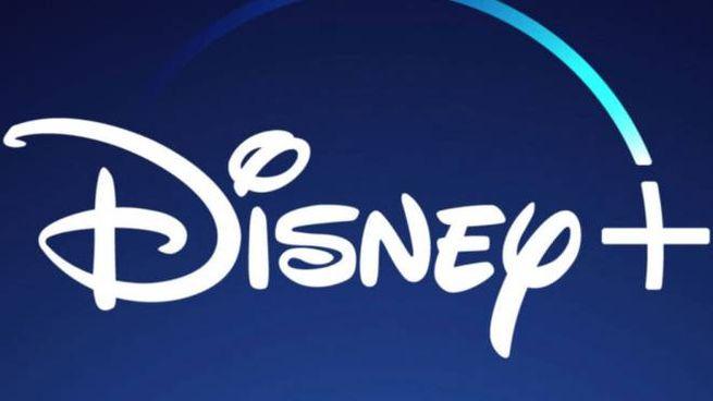 Il logo di Disney+ - Foto: Walt Disney Company