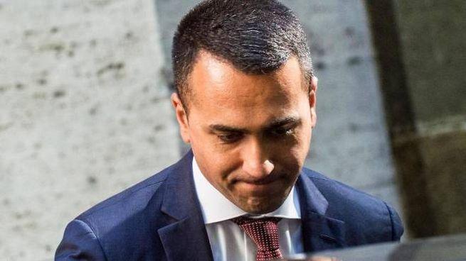 Luigi Di Maio, 33 anni, da settembre 2017 leader dei grillini