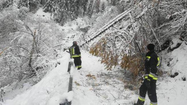 Maltempo, i vigili del fuoco al lavoro a Prato allo Stelvio (foto Ansa)
