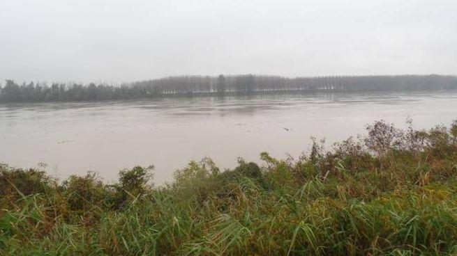 Sale il livello del fiume Po (foto di archivio)