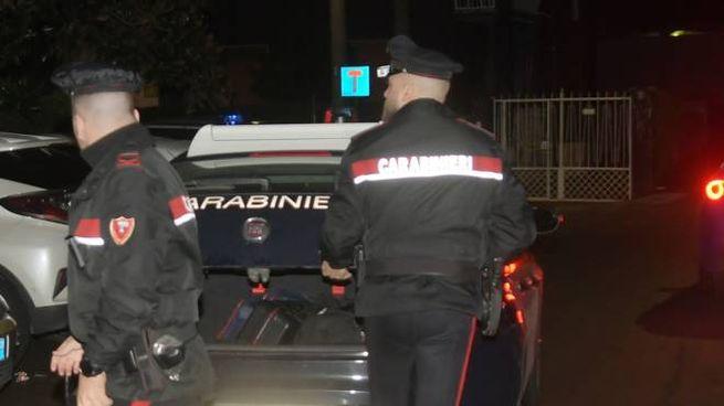 Carabinieri in azione a Pioltello (Newpress)