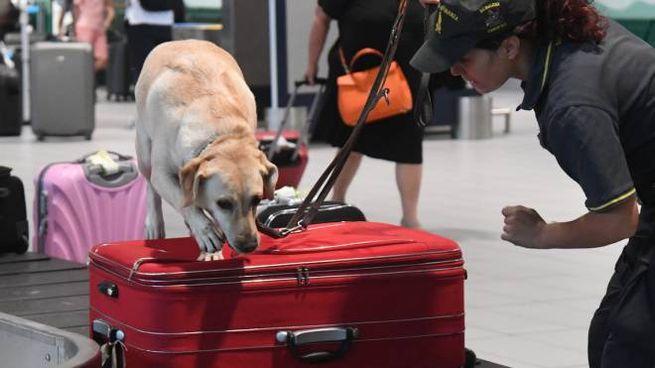 Controlli negli aeroporti (Fotoschicchi)