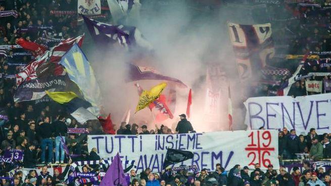 Il tifo viola (Fotocronache Germogli)