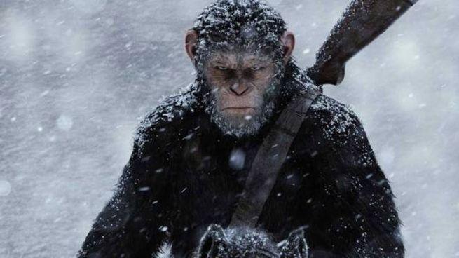 Scena dal film 'The War - Il pianeta delle scimmie' (2017) - Foto: 20th Century Fox