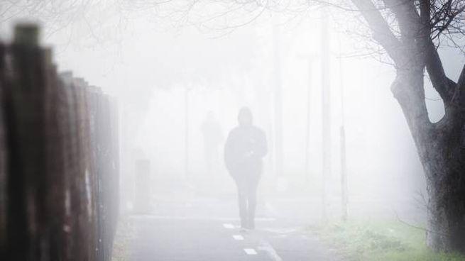 Previsioni del tempo: anticiclone e nebbia (foto iStock)