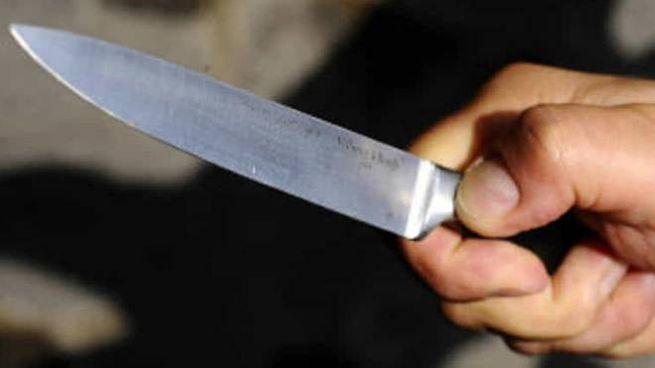 Un coltello da cucina (foto d'archivio)