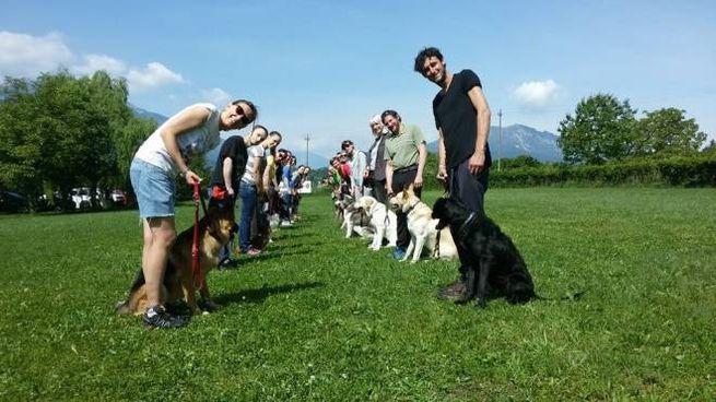 Al via il corso di Ats Insbria per imparare a trattare il proprio cane