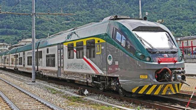 L'aggressione è avvenuta su un treno regionale