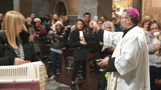 Monsignor Paolo Giulietti benedice gli animali