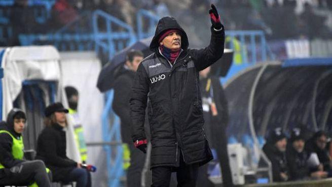 Spal Bologna, Mihajlovic in panchina nel secondo tempo (FotoSchicchi)