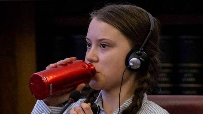 Greta Thumberg, inviata al Carnevale di Fano