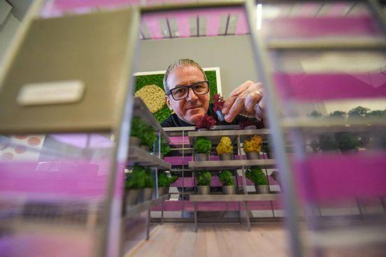 Stefano Chiocchini, inventore di Serranova, la serra urbana che sfrutta la fotoluminescenza