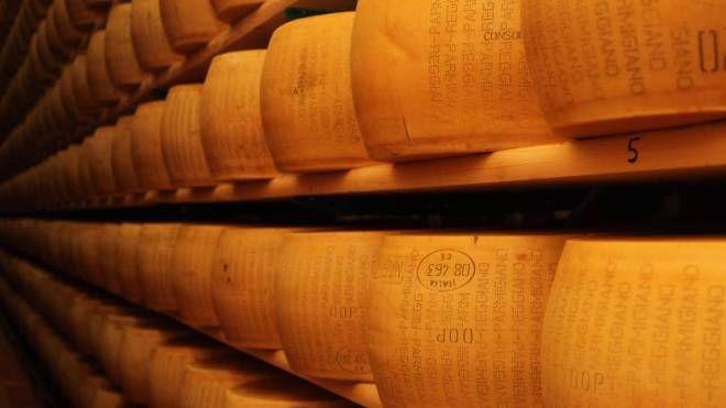 Le forme di Parmigiano Reggiano (FotoFiocchi)