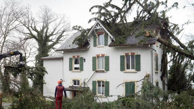 I danni della tempesta in Svizzera (foto Ansa)