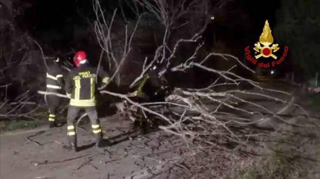 Una notte di super lavoro per i vigili del fuoco di Rimini per gli alberi caduti a causa delle forti raffiche di vento