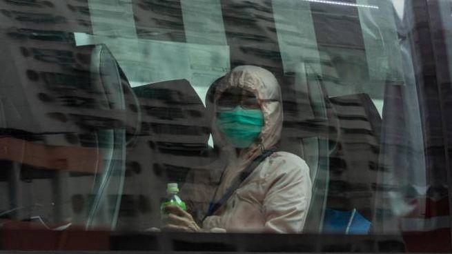 Coronavirus, evacuati dalla Diamond Princess a Hong Kong (Ansa)