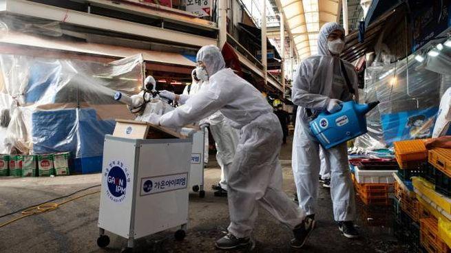Coronavirus, operazione di disinfezione in Corea del Sud (Ansa)