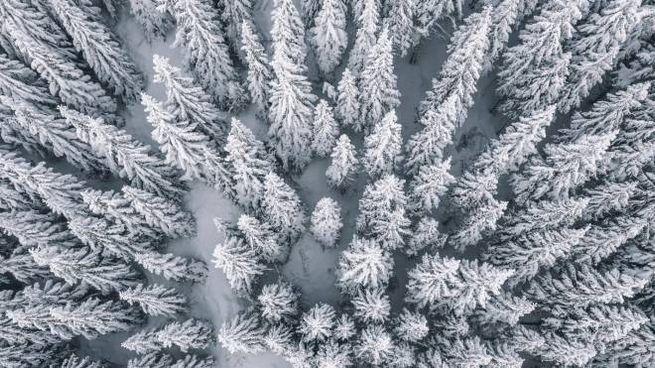 Previsioni meteo, torna la neve in molte zone d'Italia (foto iStock)
