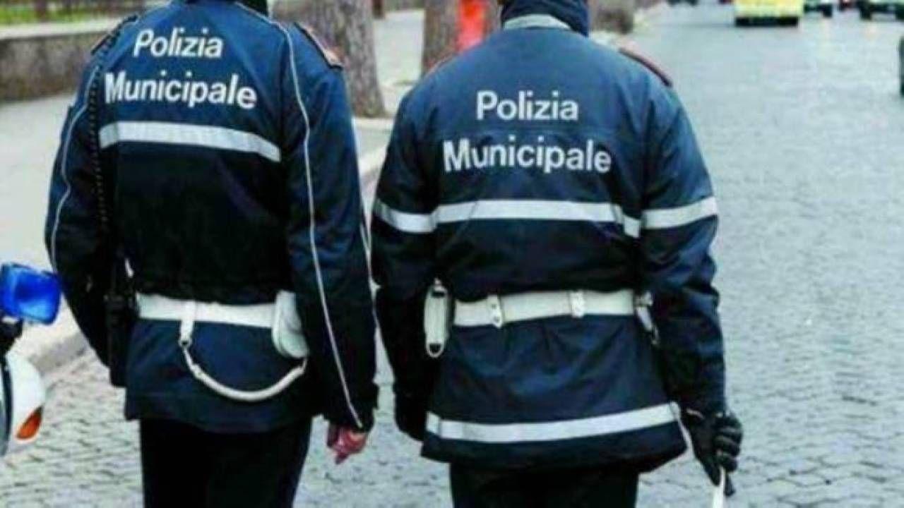Vigili urbani